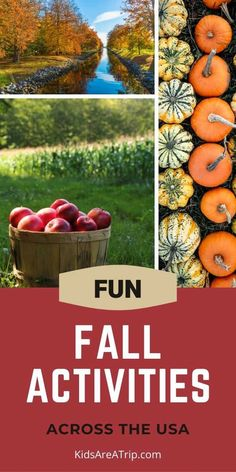 If the cooler weather has you wondering, where are the fall activities near me, we have the answers. These fun fall activities for kids span across the US. Everything from pumpkin patches to apple picking and leaf peeping. We are sure there is fall fun near you! - Kids Are A Trip |fall activities| fall travel | things to do fall | fall bucket list Activities Near Me, Autumn Activities For Kids, Toddler Travel, Family Vacation Destinations, Travel Around, Make It Simple, Things To Do, Pumpkin, Family Holiday Destinations