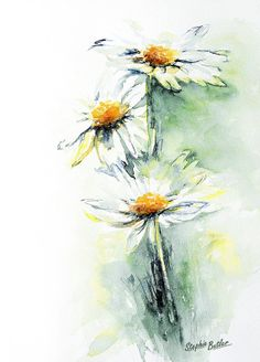 Daisy Chain. Beautiful floral Watercolour by StephieButlerStudio, $25.00
