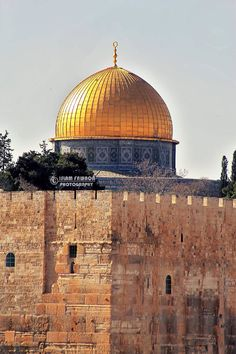 Temple Mount, Dome Of The Rock, Arab World, Islamic Paintings, Holy Land, Historical Photos, The Good Place, Taj Mahal, Beautiful Places