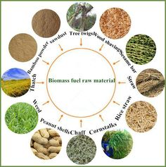 Wood biomass material to wood biomass pellet fuel