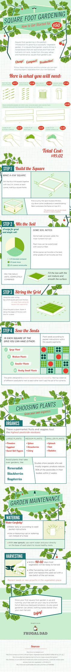 Square Foot Gardening - how to get started for Fifty dollars - Infographic