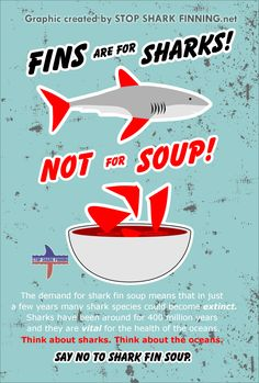 """""""Fins are for Sharks!"""" Poster"""