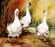 Watercolor by Vickie Nelson Watercolor Projects, Watercolor Bird, Watercolor Animals, Watercolor Paintings, Art Canard, Farm Art, Bird Artwork, Pictures To Paint, Animal Paintings