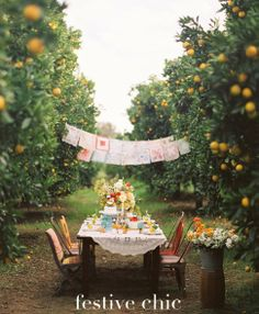 Wedding reception - long communal table with fairy lights dangled in the trees..