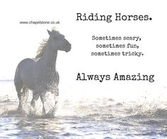 A passion that never diminishes. #Horse #Riding