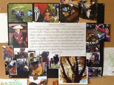 Embracing Reggio principles in practice, Louise and I are committed to research. We see research as an opportunity to act upon our knowledge in a way that is collaborative, creative and critical. Learning Stories, Play Based Learning, Project Based Learning, Learning Through Play, Learning Centers, Early Learning, Reggio Emilia Classroom, Reggio Inspired Classrooms, Preschool Classroom