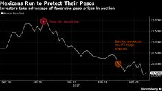 Strong demand for contracts that protect from declines in Mexico's peso shows lingering concern the currency is vulnerable to a fresh selloff after a six-week rally. Mexican Peso, Investors, Vulnerability, Rally, Mexico, Strong, Fresh