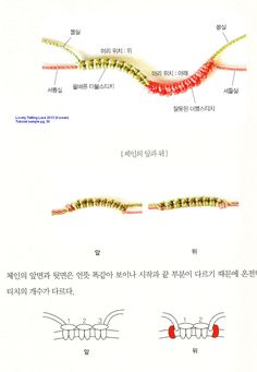 sample of tutorial style from Lovely Tatting Lace pattern book in Korean 2013
