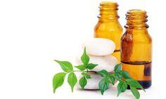 Cómo hacer aceite esencial de pachuli