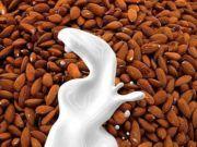 Γάλα αμυγδάλου: Η συνταγή για να το φτιάξεις με τα χεράκια σου Beans, Vegetables, Food, Beans Recipes, Veggie Food, Vegetable Recipes, Meals, Veggies