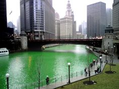 I miss my Chicago! Chicago River dyed green on St Patty's Day! Great Places, Places To See, Places Ive Been, Beautiful Places, Top Of The Morning, Roman Britain, Chicago River, Green River, My Kind Of Town