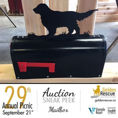 Custom Mailboxes, Auction Items, Rescue Dogs, Toy Chest, Life Is Good, Picnic, Adoption, The Incredibles, Events