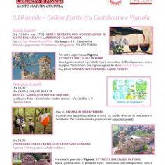 PROPOSTE WEEKEND - 9,10 Aprile - Castelvetro di Modena