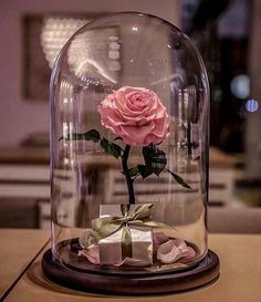 Beauty and The Beast Enchanted Rose Glass Dome LED Romantic Christmas Gift Decor for sale online Enchanted Rose, Tout Rose, Forever Rose, Romantic Gifts, Real Beauty, Pink Aesthetic, Belle Photo, Flower Arrangements, Beautiful Flowers