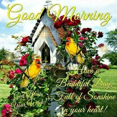 Good Morning, Happy Monday, I pray that you have a safe and blessed day! Good Morning Sister, Good Monday Morning, Good Morning Cards, Good Morning Picture, Good Morning Messages, Good Morning Good Night, Morning Pictures, Morning Greeting, Morning Images