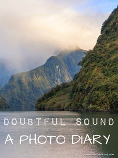 Doubtful Sound, a hidden, beautiful piece of New Zealand. Here's a photo diary to get you excited!