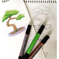 Working on some little bonsai trees! #prismacolor #bonsai #drawing #sketch #sketchbook #marker #yoch2016 #yeahshescrafty #yeahshescrafty365 #yearofcreativehabits #creative #art
