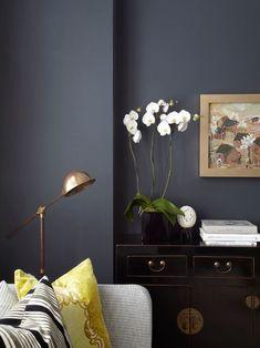 contemporary living room - dark walls and pops of color Living Room Designs, Living Room Decor, Dining Room, London Living Room, Room London, Dark Living Rooms, Dark Rooms, Piece A Vivre, Dark Interiors