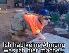 Wir haben eine Ahnung! Kommen sie zu uns: Werkzeug Weber Aschaffenburg! http://www.werkzeugweber.de/