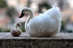 Needle Felted    Animals . Swan and The Ugly by darialvovsky