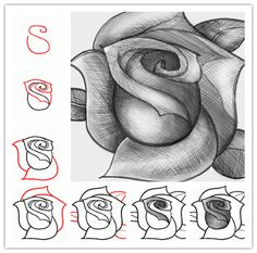 Drawing Doodles Sketches How to sketch a rose step by step DIY tutorial instructions: - Drawing Lessons, Drawing Techniques, Drawing Tips, Drawing Reference, Drawing Sketches, Art Lessons, Pencil Drawings, Sketching, Drawing Ideas
