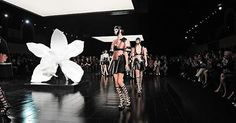 Alexander McQueen and Marc Quinn, Paris RTW SS15
