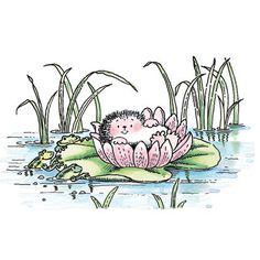 PENNY-BLACK-RUBBER-STAMP-HEDGEHOG-LILY-POND-FROGS