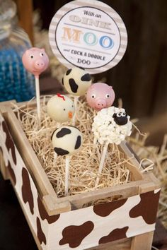 Boys Farm Themed Party Food Ideas for Boys Cake Pops