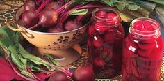 With earthy sweetness and rich colors, beets are a delicious addition to your garden. http://gardenseason.com/how-to-grow-beets/