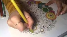 243 Best Secret Garden Coloring Book Images On Pinterest