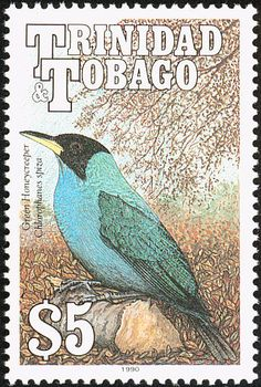 Trinidad Stamp Love these bird stamps