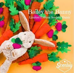 Look who has arrived bailey the bunny buddy https://kelliesheavenlyscents.scentsy.us/party/7498498