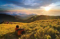 HIKE: Mt. Pulag, Philippines