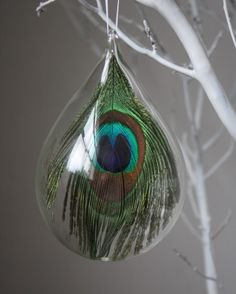 Hand Blown Glass Peacock Ornament by bluejaysnbumblebees on Etsy Peacock Christmas Tree, Peacock Ornaments, Peacock Crafts, Peacock Decor, Feather Crafts, Glass Ornaments, Christmas Bulbs, Christmas Crafts, Feather Decorations