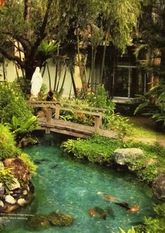 Achieve beautiful blue healthy water with Organic Pond dyes and products! Backyard Water Feature, Ponds Backyard, Backyard Waterfalls, Garden Ponds, Backyard Ideas, Pond Bridge, Garden Pond Design, Building A Pond, Pond Water Features