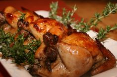 Roasted Cornish Hens with Apricot Glaze http://cookingwithmelody.com/all-recipes/main-courses/roasted-cornish-hens-with-apricot-glaze/