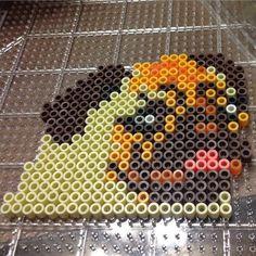 Pug dog perler beads by perlerpower❤️vanuska❤️