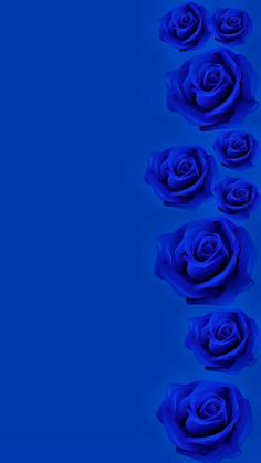 By Artist Unknown. Blue Roses Wallpaper, Blue Wallpaper Iphone, Blue Wallpapers, Flower Wallpaper, Royal Blue Wallpaper, Blue Dream, Love Blue, Everything Is Blue, Blue Pictures