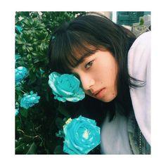 konichan7Blue rose