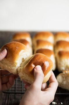 Hokkaido Milk Rolls - This will be the last dinner rolls recipe you'll ever need. Amazingly soft, light and fluffy. I guarantee.