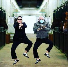 Funny Tweets, Funny Memes, Funny Signs, Bernie Memes, Asian Humor, Bernie Sanders For President, Chris Christie, Gangnam Style, Rupaul