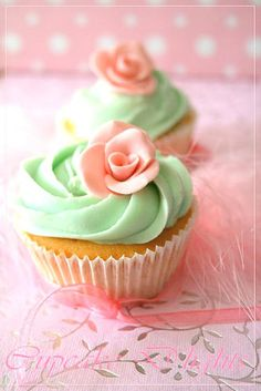 Who'd have thought I'd find my two new favorite colors on a cupcake? Yay for mint and coral! They even make cupcakes look stylish ;)