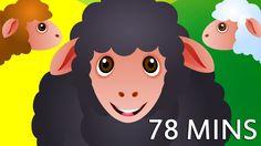 "The post ""Baa Baa Black Sheep and Many More Kids Songs & Baa Baa Black Sheep Nursery Rhyme & Christmas song Nursery Rhyme & If You& Happy And You K& appeared first on Pink Unicorn Popular Duck Nursery, Sheep Nursery, Kids Nursery Rhymes, Bingo Dog Song, Rhymes Video, Rhymes Songs, 5 Little Monkeys, Nursery Rhymes Collection, Youtube Halloween"