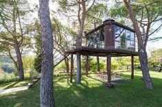 Une cabane dans les arbres en Toscane