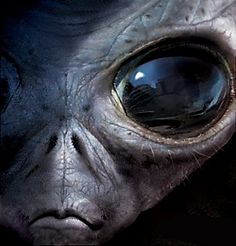 """The infamous """"Oculus Beast."""" Despite being E.T's evil cousin, he still get pleasure from phoning home."""