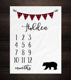 From birth to one year your baby will go from sobbing to cooing to talking. Those are incredible turning points for your baby to accomplishment in such a brief amount of time as he establishes his speech and language skills. Month Blanket Baby, Baby Milestone Blanket, Milestone Blankets, Baby Growth, Soft Baby Blankets, Newborn Baby Gifts, Newborn Nursery, Newborn Babies, Baby Milestones