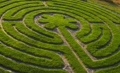 Labyrinths are sacred circles found in every culture around the globe, dating back thousands of years. They can help you to...