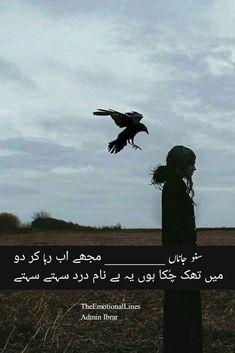 Urdu poetry Sufi Poetry, Urdu Poetry Romantic, Nice To Meet, Urdu Quotes