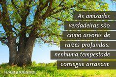 As amizades verdadeiras são como árvores de raízes profundas: nenhuma tempestade consegue arrancar. (Frases para Face)