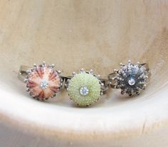 Sea Urchin Collection  Mini Silver Ring  Pink by StaroftheEast